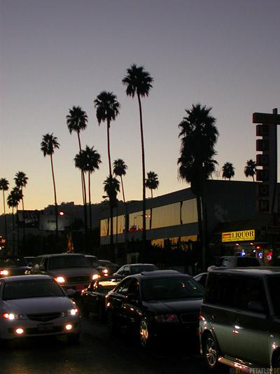 Palms-Palmen-evening-Abend-cars-Autos-Sunset-Boulevard-Hollywood-Los-Angeles-USA-DSCN5505.jpg