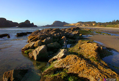 Rocky-Beach-felsiger-Strand-Oregon-Coast-near-Newport-Oregon-USA-DSCN3895.jpg
