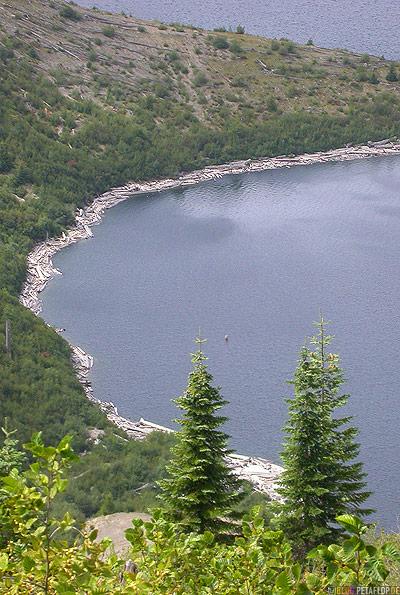 Scenery-Landschaft-Spirit-Lake-Logs-Lumber-Baumstaemme-See-Mt-Mount-St-Helens-Washington-USA-DSCN3756.jpg