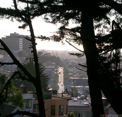 Street-View-from-Buena-Vista-Park-Hill-SF-San-Francisco-California-Kalifornien-USA-DSCN5135.jpg