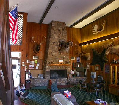 Bear-Lodge-Motel-Lobby-mounted-animals-animal-heads-big-game-Sundance-Wyoming-USA-DSCN7131.jpg