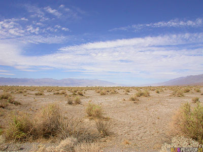 Devils-corn-field-Death-Valley-California-Kalifornien-USA-DSCN5738.jpg
