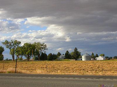 Field-Farm-Silo-Emblem-town-Wyoming-USA-00255.jpg