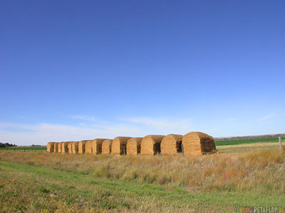 Highway-385-loaf-of-bread-loafs-straw-breads-white-bread-Brote-Brotlaibe-Stroh-Toast-Weissbrot-Nebraska-USA-DSCN7196.jpg