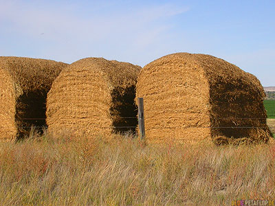 Highway-385-loaf-of-bread-loafs-straw-breads-white-bread-Brote-Brotlaibe-Stroh-Toast-Weissbrot-Nebraska-USA-DSCN7199.jpg