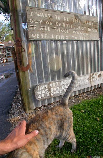 last-man-on-earth-petting-cat-Maverick-Motel-for-sale-Greybull-Wyoming-USA-00271.jpg
