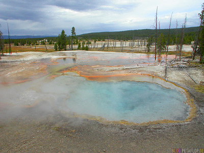 Pool-hot-spring-heisse-Quelle-Yellowstone-National-Park-Wyoming-USA-DSCN6771.jpg