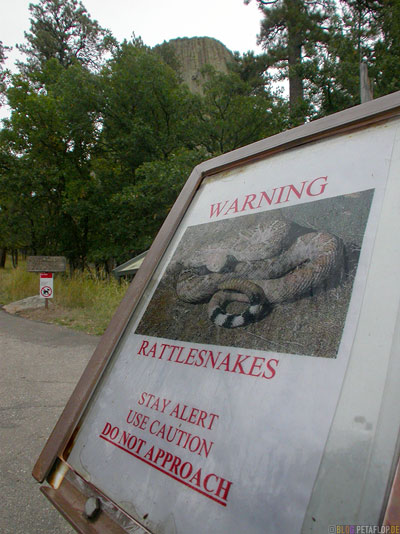 Rattlesnakes-warning-Klapperschlangen-Warnung-Devils-Tower-National-Monument-Close-Encounters-Begegnung-der-dritten-Art-Wyoming-USA-00337.jpg