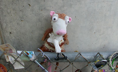 Memorabilia-cuddly-soft-toys-Erinnerungsstuecke-Stofftiere-Opfer-Bombenanschlag-Mahnmal-National-Memorial-Alfred-P-Murrah-Federal-Building-Bombing-Oklahoma-City-OK-USA-DSCN7407.jpg