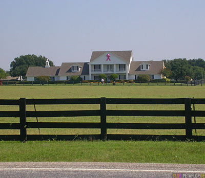 Southfork-Ranch-Dallas-TV-series-Serie-Dallas-Texas-TX-USA-DSCN7552.jpg