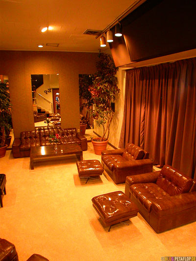 brown-leather-seats-braune-Ledersessel-Livingroom-Wohnzimmer-Lounge-Elvis-Presley-Graceland-Memphis-Tennessee-TN-USA-DSCN7821.jpg