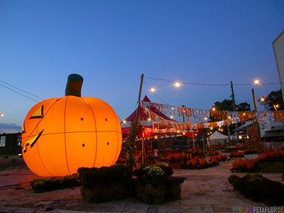giant-glowing-Pumpkin-shop-promo-leuchtender-Riesenkuerbis-Werbung-Memphis-Tennessee-TN-USA-DSCN7890.jpg