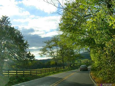 road-near-Monticello-Virginia-VA-USA-DSCN8225.jpg