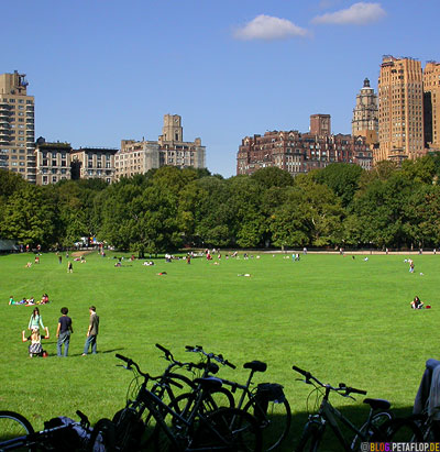Bicycles-Central-Park-New-York-City-USA-DSCN8719.jpg
