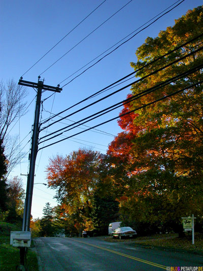 Indian-Summer-overhead-telephone-wire-oberirdische-Telefonleitungen-Connecticut-USA-DSCN8804.jpg