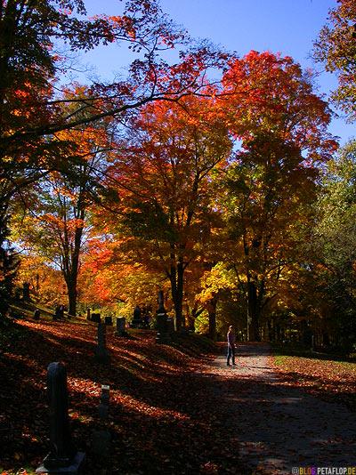 Gravestones-Indian-Summer-Trees-Canton-Cemetary-Canton-MA-Massachusetts-DSCN8818.jpg