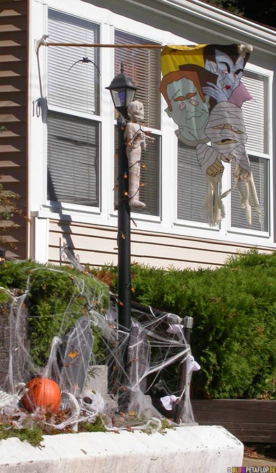 Halloween-Skeleton-Mummy-Dracula-Frankenstein-Puppet-Canton-MA-Massachusetts-USA-DSCN8862.jpg