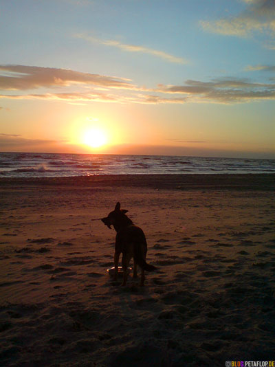 Handyfoto-mit-Fina-Strand-beach-Sonnenuntergang-sunset-Groote-Keeten-Noord-Holland-Netherlands