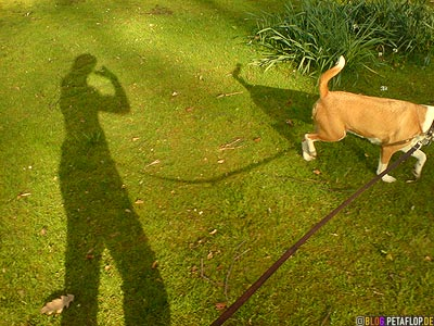 shadow-of-the-photographer-Schatten-des-Fotografen-Walking-the-Dog-Gassi-gehen-Paska-Langenbergpark-Bocholt-Germany-DSC00022.jpg