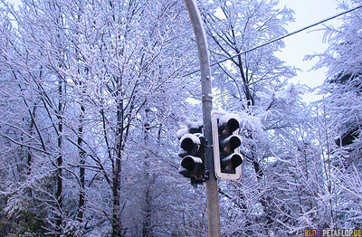 Mettmann Traffic lights Ampel Schnee snow