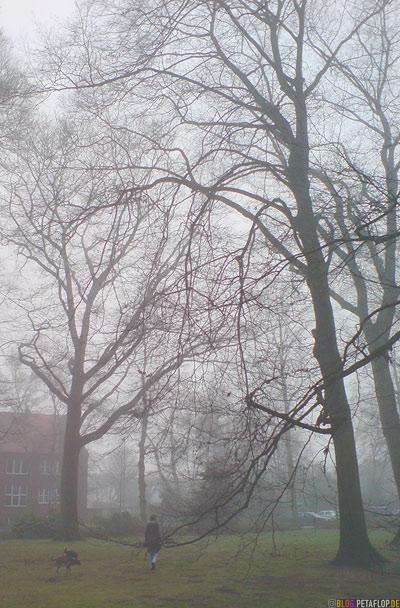 Langenbergpark im Nebel